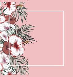 flowers frame tropical pink background vector image