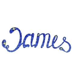 James name lettering tinsels vector