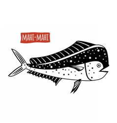 Mahi-mahi black and white vector