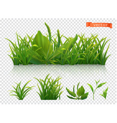 spring green grass 3d realistic icon set vector image