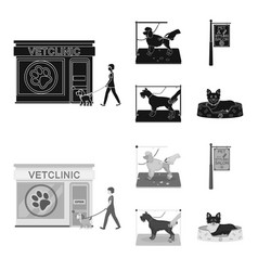 Visiting a vet clinic a signboard of a stylish vector