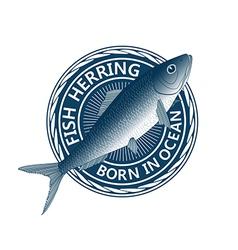 blue fish herring vector image vector image