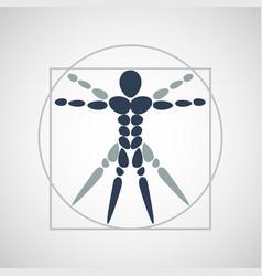 anatomy logo icon design vector image
