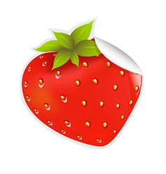 Label Strawberry vector image vector image