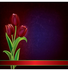 abstract dark grunge background with red tulips vector image vector image