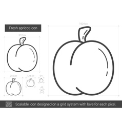 Fresh apricot line icon vector image vector image