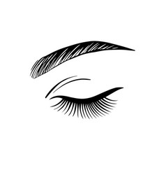 closed female eye with long eyelashes vector image