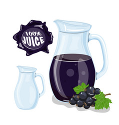 glass jug with natural juice ripe currant juice vector image