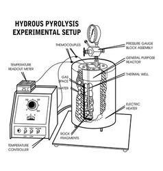 Hydrous pyrolysis vector