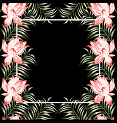 lotus flowers fern floral frame black background vector image