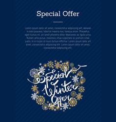 special winter offer in frame made of snowflakes vector image