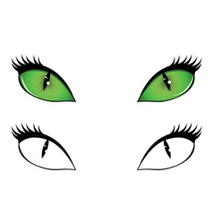 Cartoon cat eyes vector image vector image
