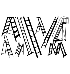 ladders vector image vector image