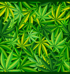 cannabis leaf seamless pattern vector image