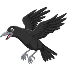 cartoon crow flying isolated on white background vector image