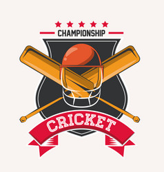 cricket championship game vector image