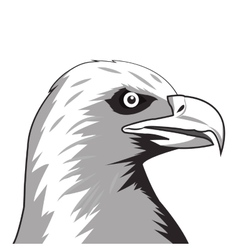 eagle drawing icon vector image