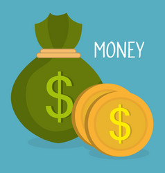money bag with coins vector image