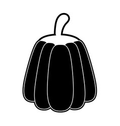 pumpkin vegetable isolated vector image
