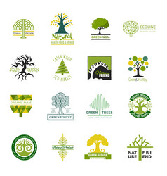 Tree logo treetops logotype of fir-tree or vector