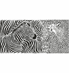 wild animals background - pattern with zebra and vector image