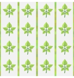 Pattern with green autumn leaves vector image