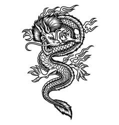 a asian dragon vector image