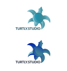 company logo with turtle sign vector image