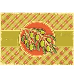 Green olives on vintage background vector image
