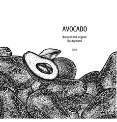 Hand drawn background with avocado vintage vector