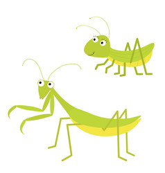 Mantis grasshopper icon set cute cartoon kawaii vector