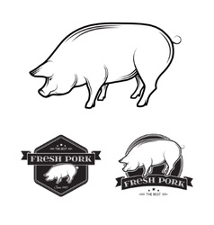 Pork labels vector image