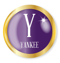y for yankee vector image