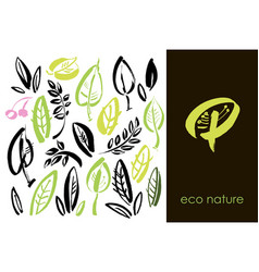 Set of hand drawn leaves green leaf sketches and vector