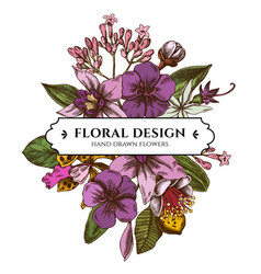 floral bouquet design with colored laelia feijoa vector image