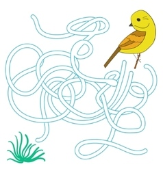 Game labyrinth find a way bird vector image