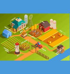 Isometric farm infographics vector