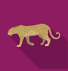 leopardafrican safari single icon in flat style vector image