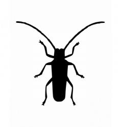 long horn beetle vector image