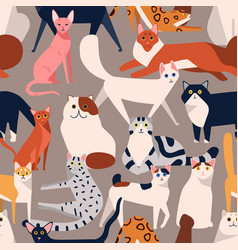 seamless colored pattern with different cat breeds vector image
