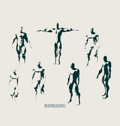 The set of 7 body building silhouette vector