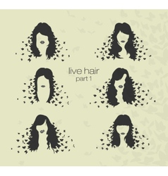 womens hairstyles and hair with butterflies vector image