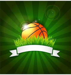 Basketball ball on field grass vector image vector image