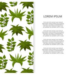 flat green plants banner design vector image