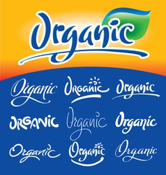 organic hand lettering vector image vector image