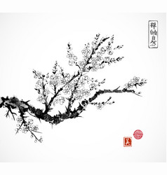 oriental sakura cherry tree in blossom and fishing vector image vector image