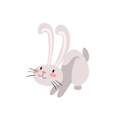 cute adorable white easter bunny funny rabbit vector image