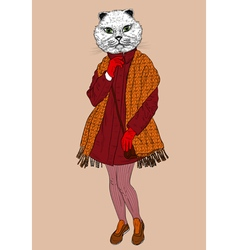 Fashion cat portrait vector image