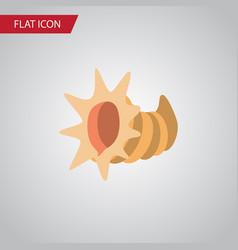 isolated cockleshell flat icon seashell vector image
