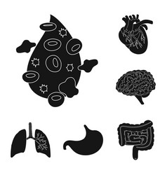 Isolated object research and laboratory icon vector
